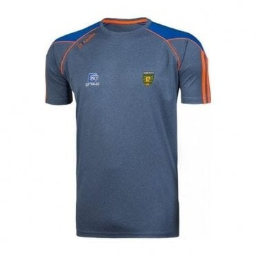 Boys Donegal GAA Dillion 01 Tshirt Grey