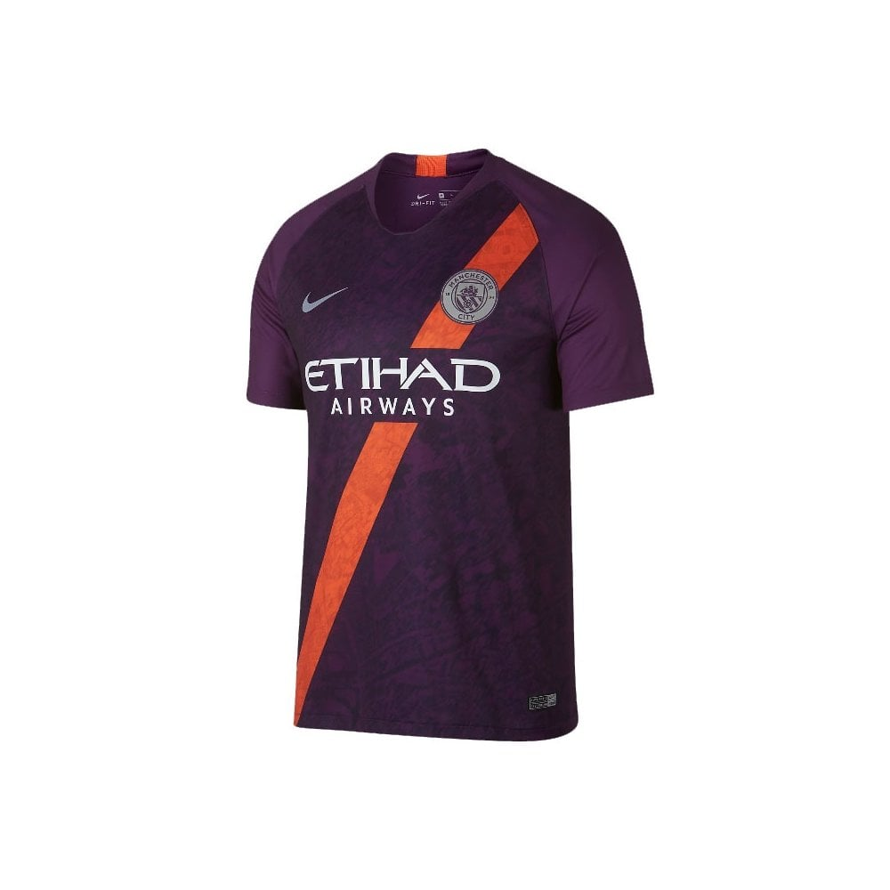 766ebdbcdddc Nike Men s Man City Third Jersey 18 19