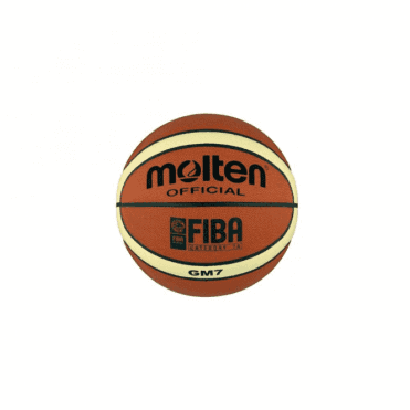 School Basketball Molten GM Series